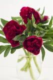 Peonías rojas grandes del ramo del jardín en un jarro de cristal Imagen de archivo