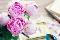 Peonías rosadas Fotos de archivo libres de regalías