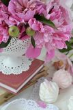 Peonías rosadas Fotografía de archivo libre de regalías