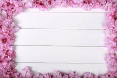 Peonías rosadas imponentes en el fondo de madera rústico blanco Imagen de archivo