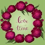 Peon?as del vector Marco redondo de las flores de Borgoña Guirnalda de la flor en un fondo verde claro Plantilla para el diseño f stock de ilustración