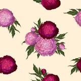 Peon?as del vector Modelo inconsútil de la rosado-lila y de las flores de Borgoña Ramos de flores en un fondo beige Plantilla par ilustración del vector