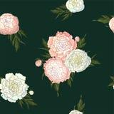 Peon?as del vector Modelo inconsútil de las flores blancas y rosas claras Ramos de flores en un fondo verde oscuro Plantilla para stock de ilustración