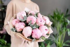 Peon?as rosadas en las manos de la mujer Flor hermosa de la peon?a para el cat?logo o la tienda en l?nea Concepto floral de la ti foto de archivo