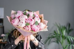 Peon?as rosadas en las manos de la mujer Flor hermosa de la peon?a para el cat?logo o la tienda en l?nea Concepto floral de la ti fotografía de archivo libre de regalías