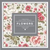 Peonías, manzanilla, marco de los Wildflowers Fotografía de archivo