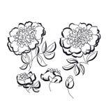 Peoni kwiecisty nakreślenie niebieski kwiat eps do formatu zielone ilustracji różowego spring różnic żółty wektora Czerni Obrazy Stock