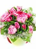 peoni róże Zdjęcie Stock