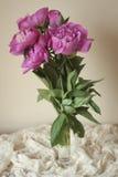 Peoni wazy skład Obrazy Royalty Free