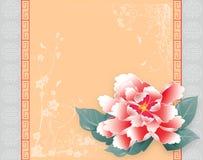 Peonia cinese della scheda dell'nuovo anno Fotografie Stock