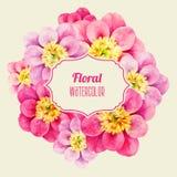 Peonia floreale dell'acquerello con il simbolo dell'etichetta Immagini Stock