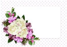 Peonia i dzikich kwiatów skład na biel karcie Obraz Stock