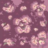 Peonia kwiaty Fotografia Stock