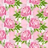 Peonia kwitnie bezszwowego deseniowego tło Czuli menchia kwiaty Ślubny projekt beak dekoracyjnego latającego ilustracyjnego wizer Obrazy Stock