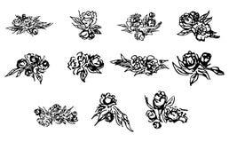 Peonie astratte e rose isolate su fondo bianco Raccolta floreale disegnata a mano 11 elemento grafico floreale Grande insieme illustrazione vettoriale
