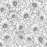 Peonie deseniowy czarne biały & Fotografia Stock