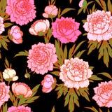 Peonie rosa рattern senza cuciture Immagine Stock