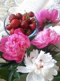 Peonie rosa e bianche con le fragole immagine stock libera da diritti