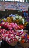 Peonie rosa e di draghi improvvisi colorati multi Immagini Stock Libere da Diritti
