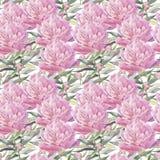 Peonie rosa Illustrazione dipinta a mano dell'acquerello Reticolo senza giunte royalty illustrazione gratis