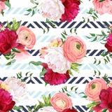 Peonie rosse e bianche di Borgogna, ranunculus, modello senza cuciture di vettore della rosa Immagine Stock