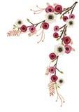 Peonies και anemone Στοκ Φωτογραφίες
