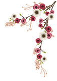 Peonies and anemone. Illustration of peonies and anemone flowers on a tree branch Stock Photos