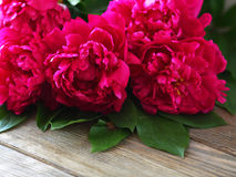 Peonies on the boards Royalty Free Stock Photo