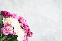 Peonies bouquet on grey background. Floral background Royalty Free Stock Images