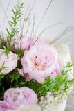 Peonies bouquet Stock Photos