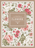 Peonies, chamomile, Wildflowers frame label card. Drawing, engraving. Vector victorian Illustration. Beautiful baroque flowers. Royalty Free Stock Image