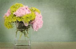 Peonies and chrysanthemums in vase Stock Photography