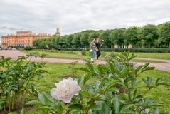 Peonies on The Field of Mars. St. Petersburg. Russia Stock Photo