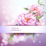 Peonies flowers background. Stock Image
