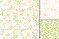 Peonies flowers with green leaves seamless pattern background set. Stock Images