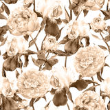 Peonies flowers, irises and butterflies. Retro seamless background. Floral pattern. Sepia vintage watercolor Royalty Free Stock Image