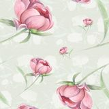 Peonies - flowers and leaves. Decorative composition on a watercolor background. Floral motifs. Seamless pattern. Use printed materials, signs, items, websites Stock Images