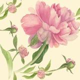 peonies Fundo sem emenda Colagem das flores e das folhas Fotografia de Stock Royalty Free