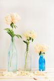 Peonies in Glass Bottles. Three Peonies each in a Glass Bottle on White Background with Space for Text Stock Photography