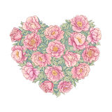Peonies heart. Vector heart of   peonies on white background Royalty Free Stock Photos