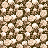 Peonies, irises and butterflies. Retro seamless background. Floral pattern. Watercolor Royalty Free Stock Images
