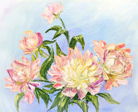Peonies, oil painting on canvas royalty free illustration