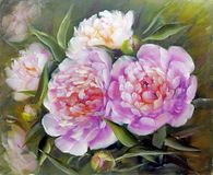 Peonies, oil painting on canvas vector illustration