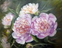 Peonies, oil painting on canvas. Romantic Pink Peonies, oil painting on canvas stock photos