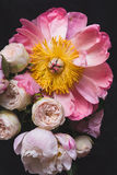 Peonies and roses bouquet. Shabby chic pastel bouquet. Peonies and roses bouquet. Shabby chic pastel colored wedding bouquet. Closeup view, selective focus stock images