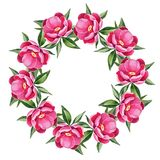 Peonies. Round frame 3. Floral wreath, isolated on white background Stock Photos
