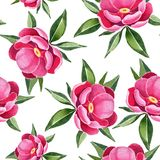 Peonies. Seamless pattern 3. Floral background. Hand drawn watercolor floral pattern Royalty Free Stock Image