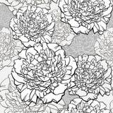 peonies Sluit omhoog van gebraden ei in pan op zwarte achtergrond Geschetste bloemdruk in zwart-wit kleuren - naadloze achtergron Stock Afbeeldingen