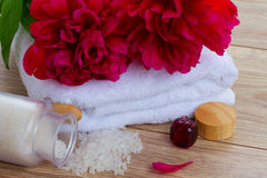 Peonies spa concept Stock Image