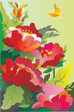 Peonies. Spring flowers, peonies bloom in may, red, pink, white, dark green of their surroundings butterfly circling above them Stock Photography